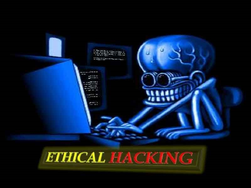 ethical hacking and ethical hackers essay